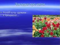 Різний колір одежини У прекрасної... Загадки про квіти