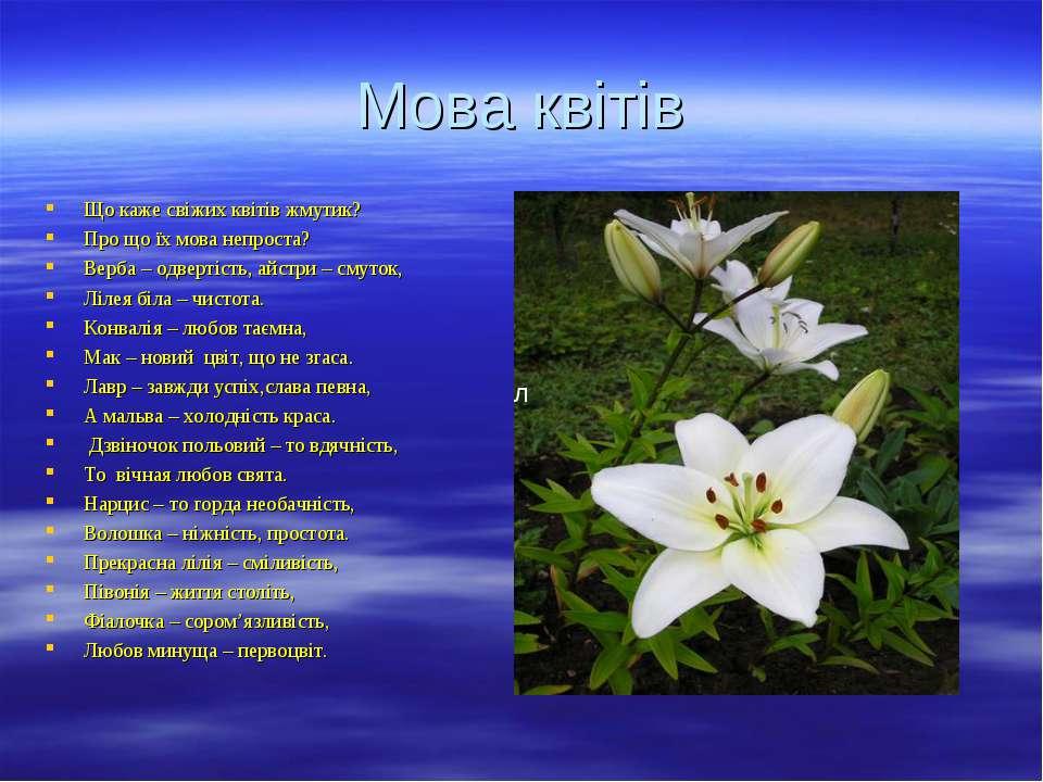 Мова квітів Що каже свіжих квітів жмутик? Про що їх мова непроста? Верба – од...