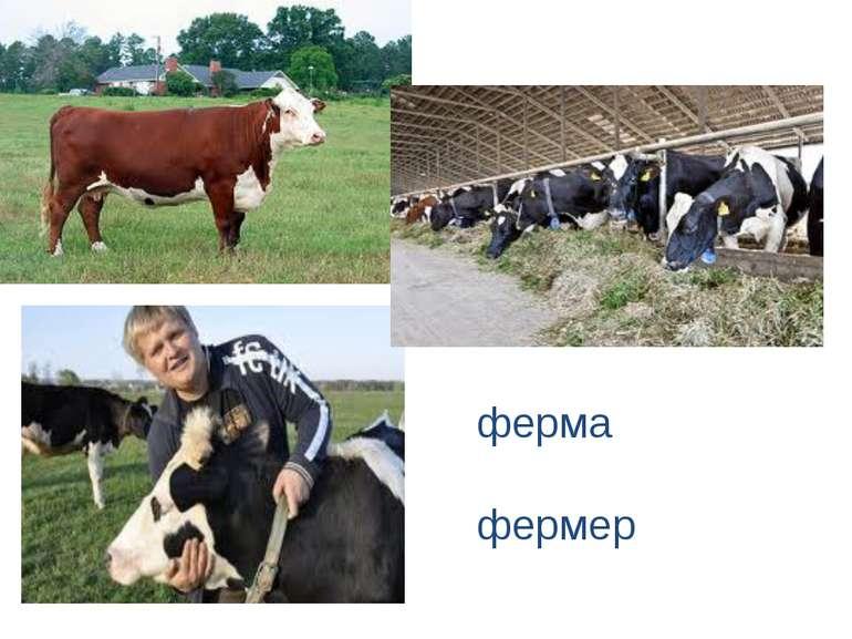 ферма фермер