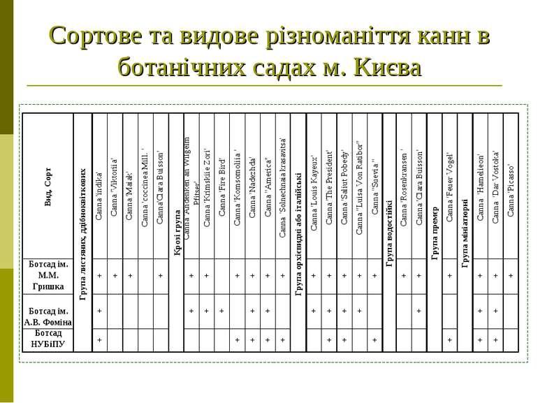 Сортове та видове різноманіття канн в ботанічних садах м. Києва