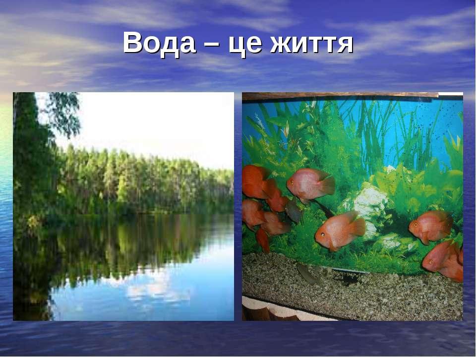 Вода – це життя