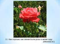 11. Как хороши, как свежи были розы в моем саду (Мятлев И.)