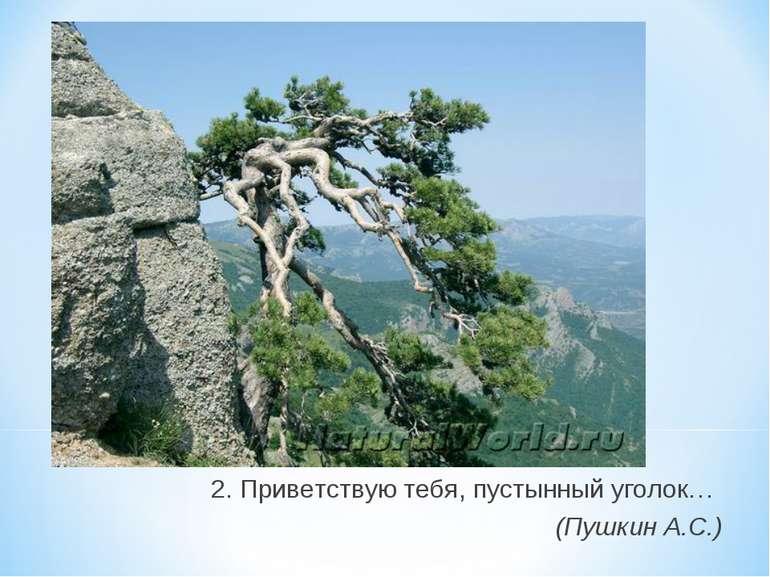 2. Приветствую тебя, пустынный уголок… (Пушкин А.С.)