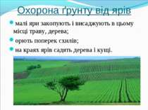Охорона ґрунту від ярів малі яри закопують і висаджують в цьому місці траву, ...