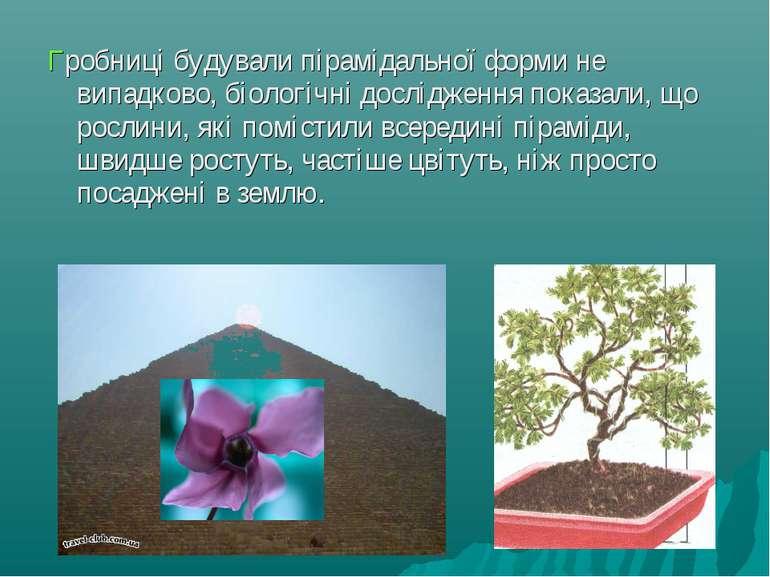 Гробниці будували пірамідальної форми не випадково, біологічні дослідження по...