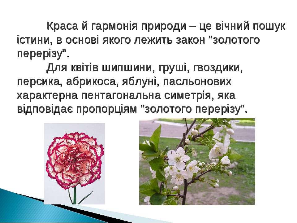 Краса й гармонія природи – це вічний пошук істини, в основі якого лежить зако...