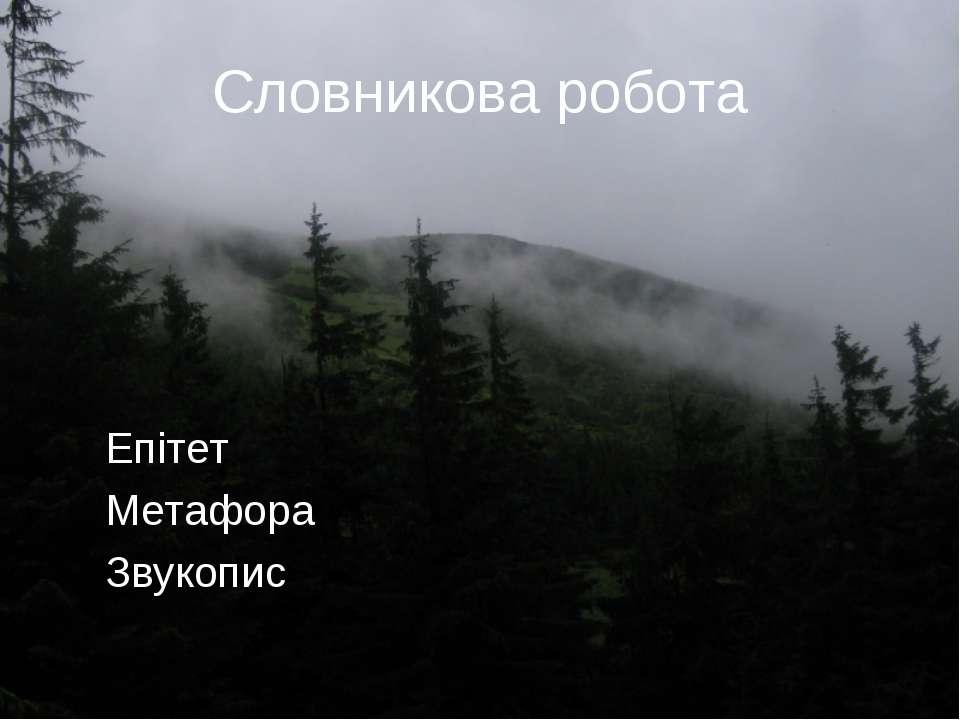 Словникова робота Епітет Метафора Звукопис