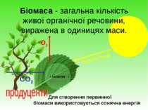 Біомаса - загальна кількість живої органічної речовини, виражена в одиницях м...