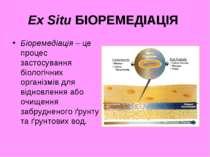 Ex Situ БІОРЕМЕДІАЦІЯ Біоремедіація – це процес застосування біологічних орга...