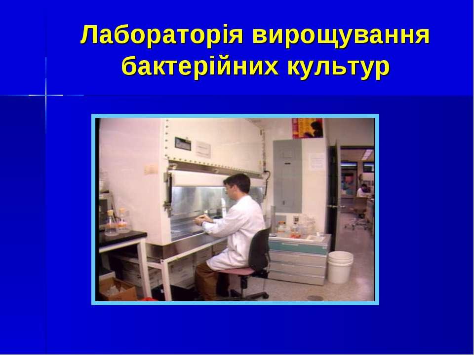 Лабораторія вирощування бактерійних культур