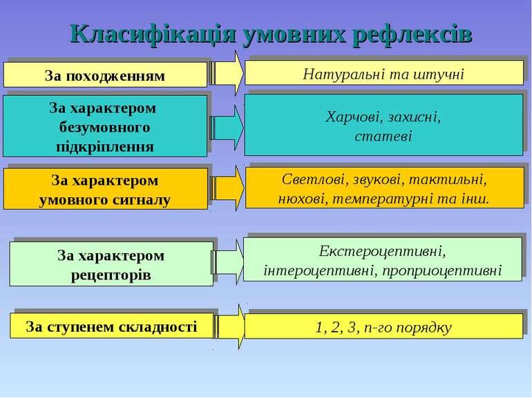 Класифікація умовних рефлексів За походженням Натуральні та штучні За характе...