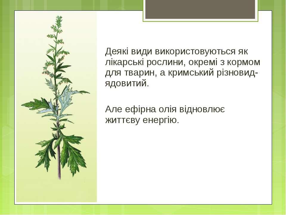 Деякі види використовуються як лікарські рослини, окремі з кормом для тварин,...