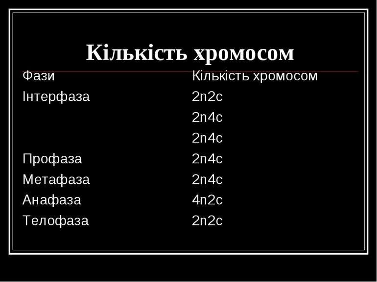 Кількість хромосом Фази Кількість хромосом Інтерфаза 2n2c 2n4c 2n4c Профаза 2...