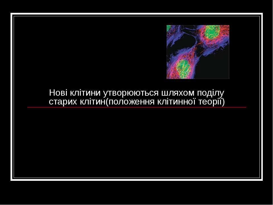 Нові клітини утворюються шляхом поділу старих клітин(положення клітинної теорії)