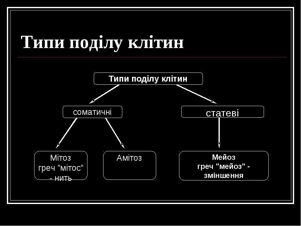 """Типи поділу клітин Типи поділу клітин соматичні статеві Мейоз греч """"мейоз"""" - ..."""