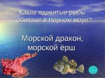 Какие ядовитые рыбы обитают в Чёрном море? Морской дракон, морской ёрш