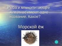 Рыба и млекопитающее животное имеют одно название. Какое? Морской ёж