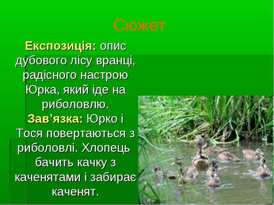 Сюжет Експозиція: опис дубового лісу вранці, радісного настрою Юрка, який іде...