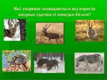 Які тварини захищаються від ворогів завдяки здатності швидко бігати?