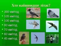Хто найшвидше літає? 360 км/год 105 км/год 100 км/год 80 км/год 70 км/год 60 ...