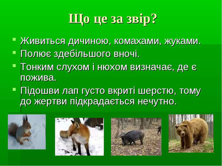 Що це за звір? Живиться дичиною, комахами, жуками. Полює здебільшого вночі. Т...