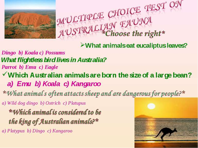 What animals eat eucaliptus leaves? a) Dingo b) Koala c) Possums What flightl...