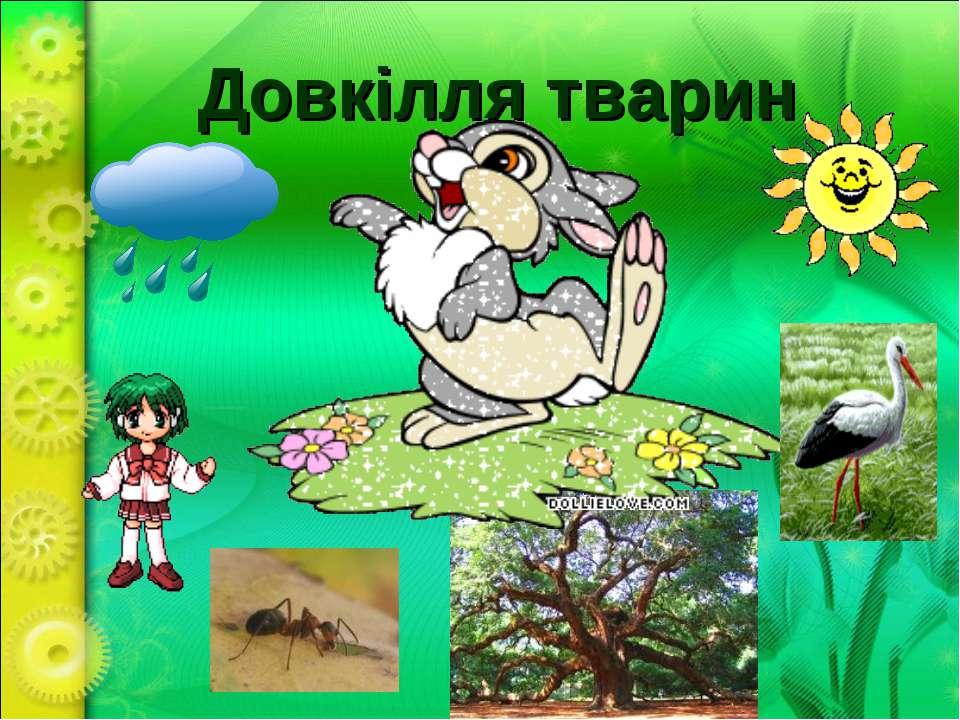 Довкілля тварин