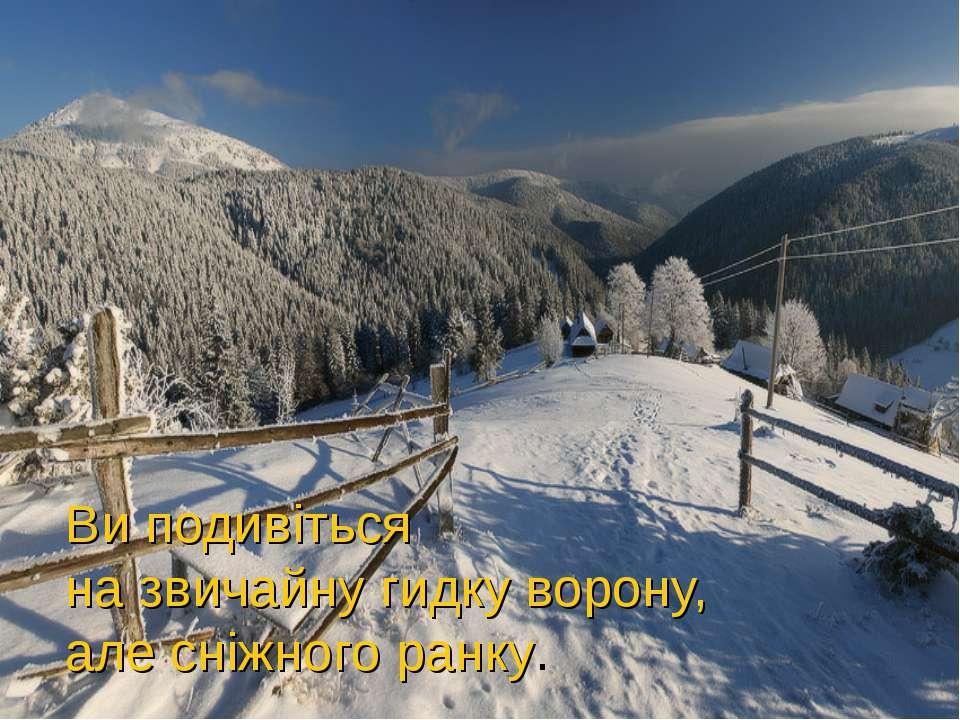 Ви подивіться на звичайну гидку ворону, але сніжного ранку.