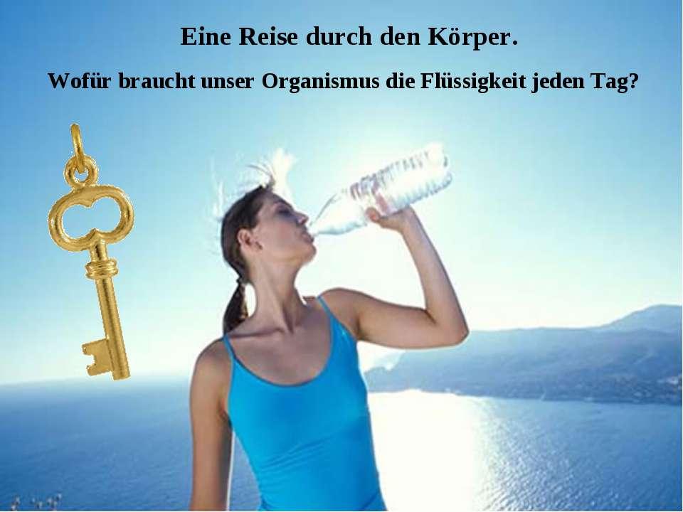 Eine Reise durch den Körper. Wofür braucht unser Organismus die Flüssigkeit j...