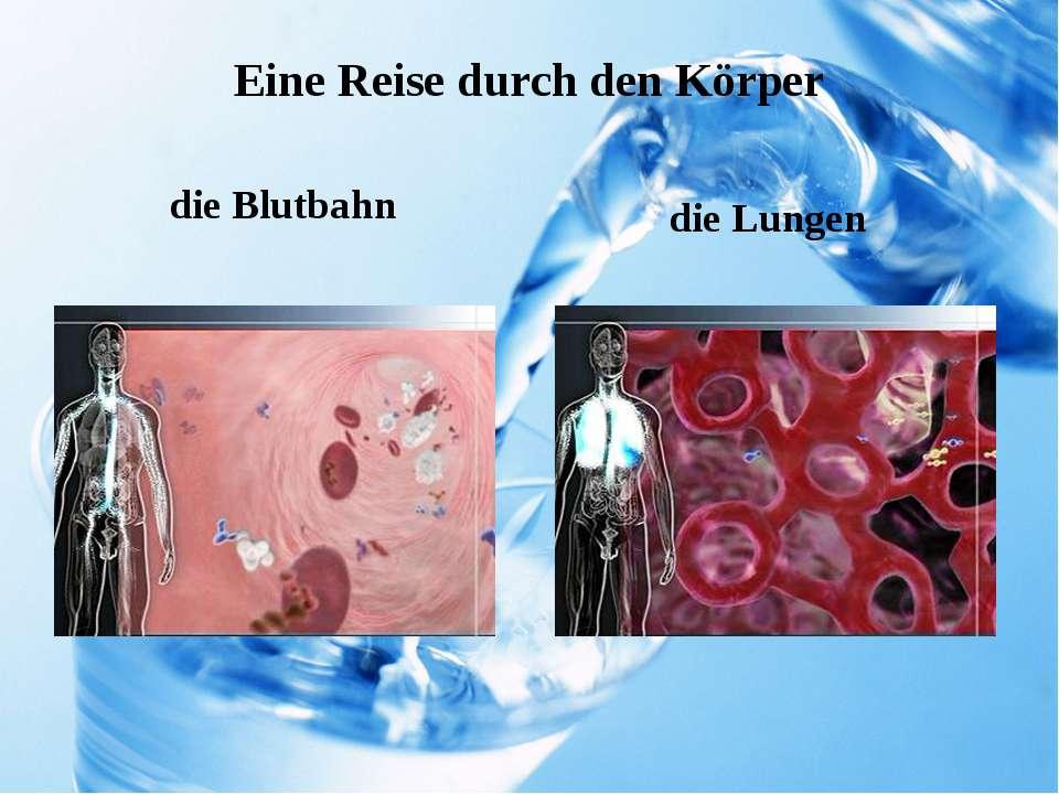 Eine Reise durch den Körper die Blutbahn die Lungen
