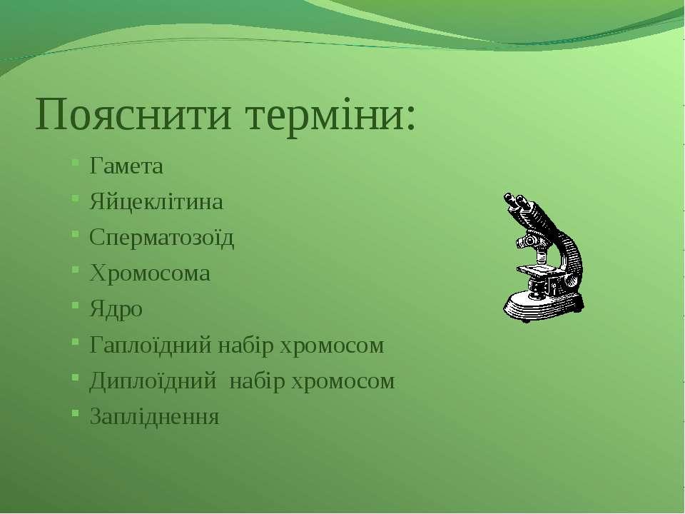 Пояснити терміни: Гамета Яйцеклітина Сперматозоїд Хромосома Ядро Гаплоїдний н...