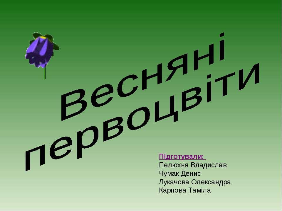 Підготували: Пелюхня Владислав Чумак Денис Лукачова Олександра Карпова Таміла