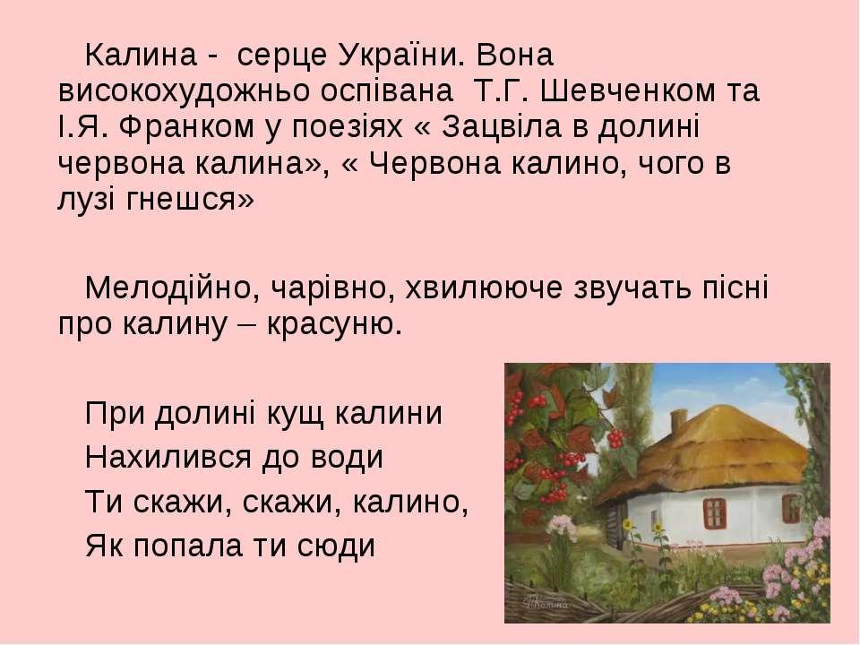 Калина - серце України. Вона високохудожньо оспівана Т.Г. Шевченком та І.Я. Ф...