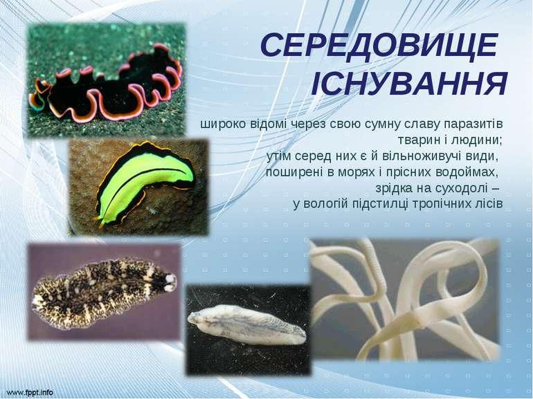 СЕРЕДОВИЩЕ ІСНУВАННЯ широко відомі через свою сумну славу паразитів тварин і ...