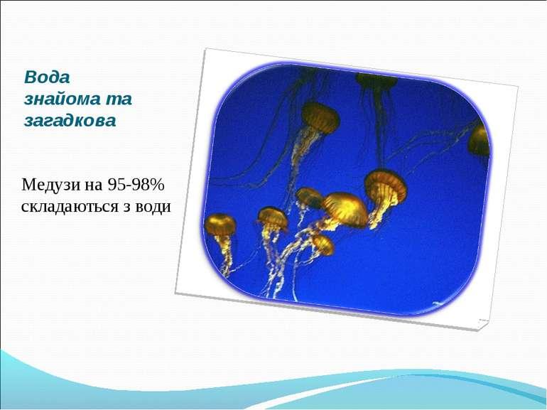 Вода знайома та загадкова Медузи на 95-98% складаються з води