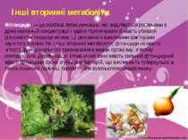 Інші вторинні метаболіти Фітонциди — це особливі леткі речовини, які виділяют...