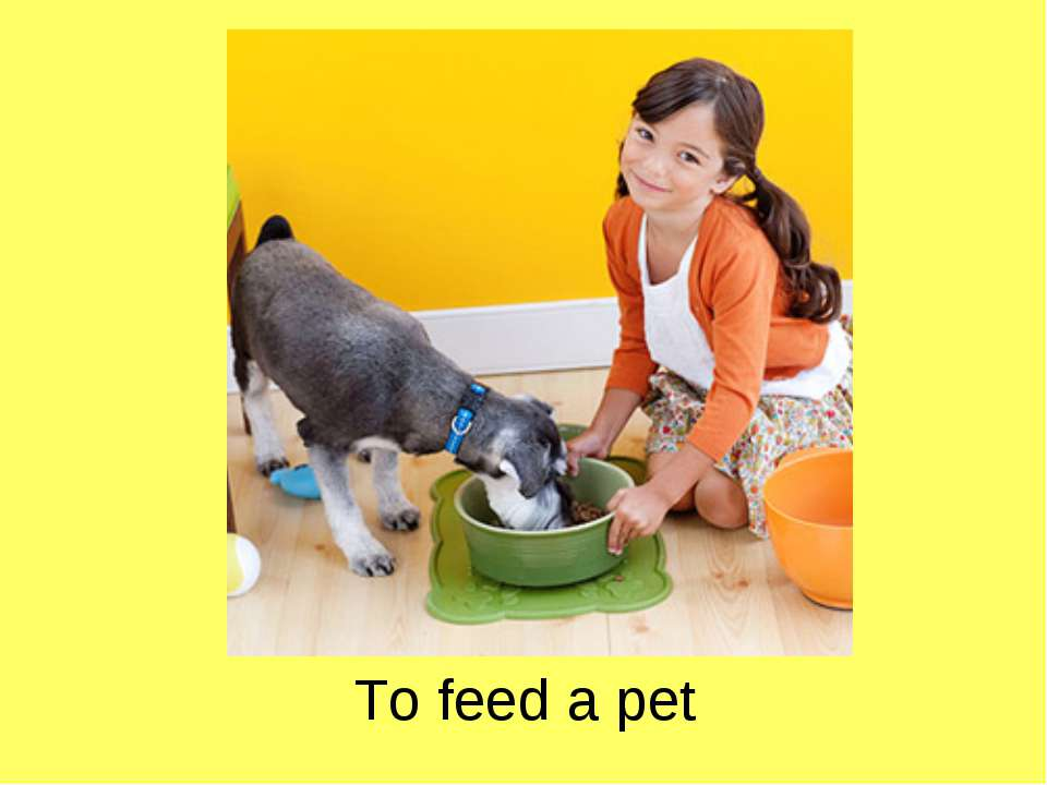 To feed a pet