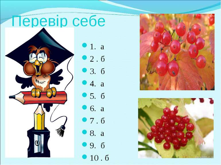 Перевір себе 1. а 2 . б 3. б 4. а 5. б 6. а 7 . б 8. а 9. б 10 . б