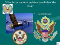 What is the national emblem (symbol) of the USA? The Bald Eagle