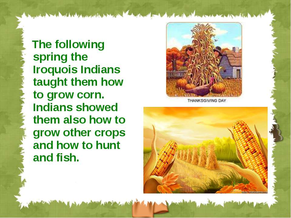 The following spring the Iroquois Indians taught them how to grow corn. India...