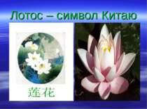Лотос – символ Китаю