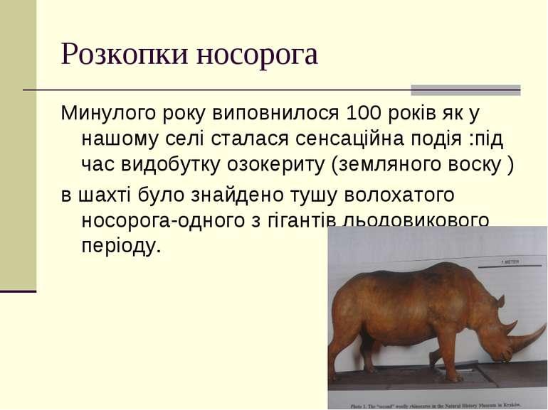 Розкопки носорога Минулого року виповнилося 100 років як у нашому селі сталас...