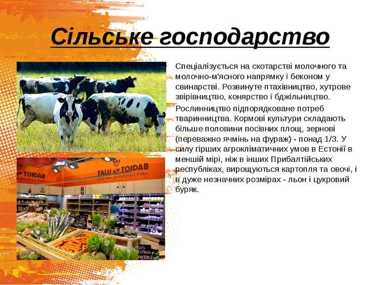 Сільське господарство Спеціалізується на скотарстві молочного та молочно-м'яс...