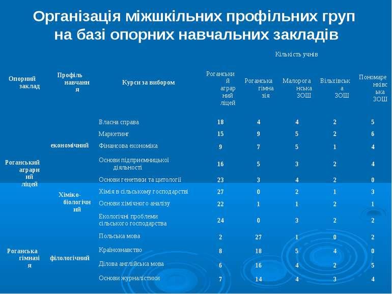 Організація міжшкільних профільних груп на базі опорних навчальних закладів О...