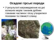 Осадові гірські породи У результаті нагромадження на дні колишніх морів і оке...