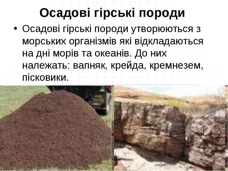Осадові гірські породи Осадові гірські породи утворюються з морських організм...