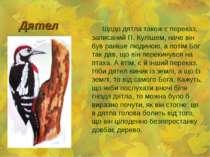 Дятел Щодо дятла також є переказ, записаний П. Кулішем, наче він був раніше л...