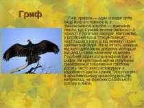 Гриф Гиф, грифон — один із видів орла. Іноді його ототожнюють з фантастичною ...