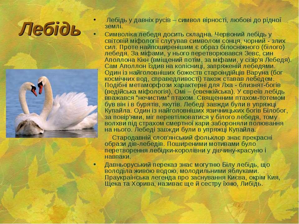 Лебідь Лебідь у давніх русів – символ вірності, любові до рідної землі. Симво...