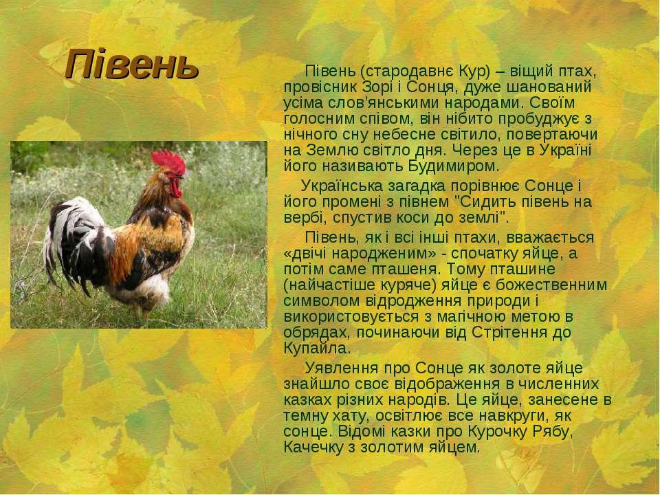Півень Півень (стародавнє Кур) – віщий птах, провісник Зорі і Сонця, дуже шан...